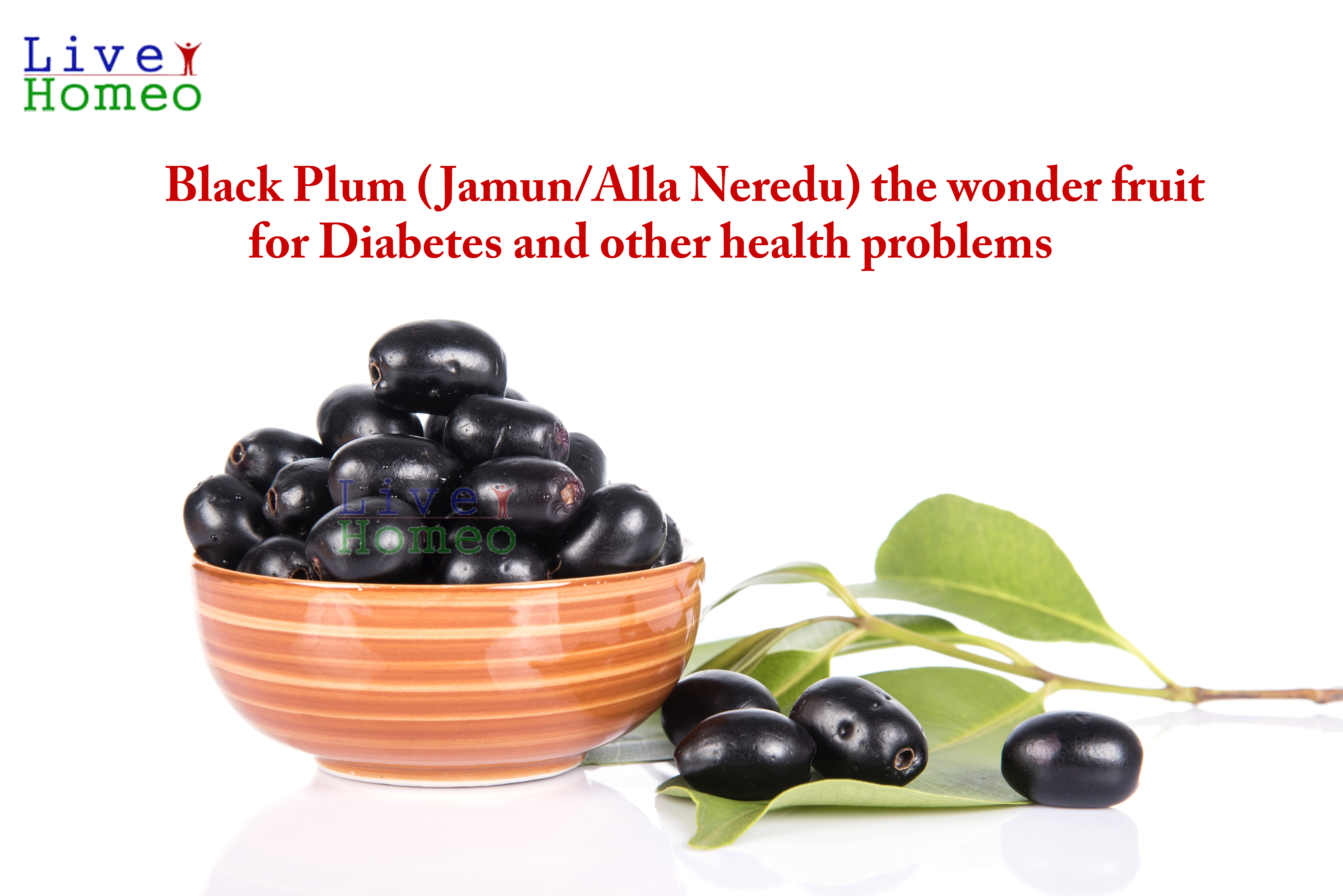 Black Plum the wonder fruit for Diabetes and other health problems